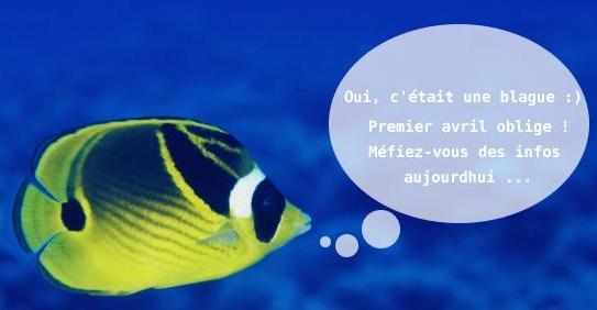 http://abcdelasecurite.free.fr/html/images/poisson-d-avril.jpg